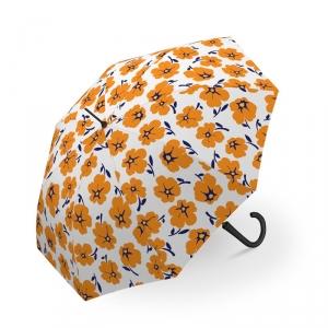 长柄-暖橙色花1